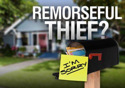 ksnw-monitor-remorseful-thief