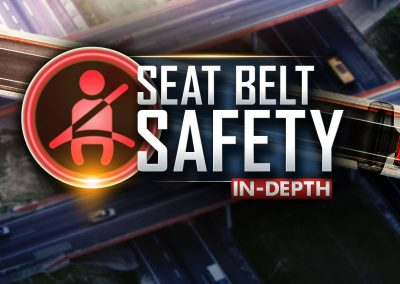 Seat Belt Safety In-Depth Monitor/OTS Graphic